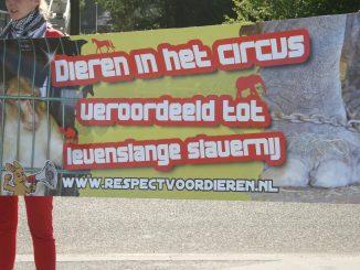 Protest tegen dieren in het circus